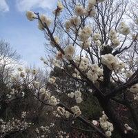 Photo taken at 東山動植物園 お花畑 by Yoshitaka O. on 3/2/2014
