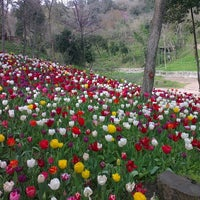 Photo taken at Yıldız Parkı by TC Murat D. on 4/6/2013