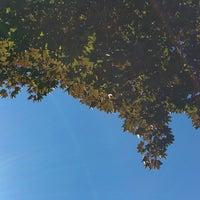 Photo taken at City Park by Alex R. on 9/7/2014