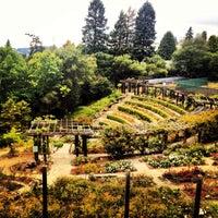 Berkeley Rose Garden Berkeley Hills 17 tips