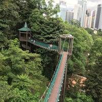 Photo taken at Bukit Nanas Forest Reserve by Dana B. on 11/12/2017