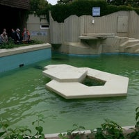 Photo taken at Allwetterzoo Münster by iris v. on 9/8/2013
