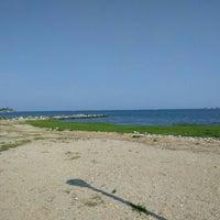 Photo taken at Calf Pasture Beach by alaN on 5/28/2016