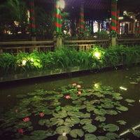 Photo taken at Sen Tây Hồ by Zhuangng N. on 12/23/2012