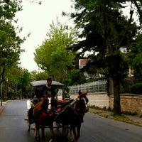 Photo taken at Çankaya Caddesi by Şahin I. on 4/26/2016