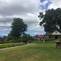 Photo taken at Maui's Winery by Maya B. on 8/27/2017