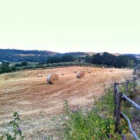 Photo taken at Agriturismo Rodeo by Angelo U. on 6/8/2014