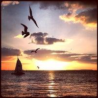 Photo taken at Big Pine Key by Sandro Escobar on 3/11/2013