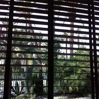 Foto tomada en Hotel Milenio por Elvira el 11/28/2012