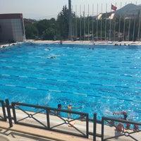 7/17/2017 tarihinde Pınar G.ziyaretçi tarafından Narlıdere Yüzme Havuzu'de çekilen fotoğraf