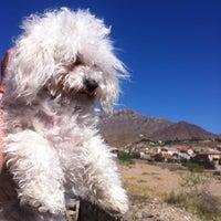 Photo taken at McKelligon Canyon by Nomasfe B. on 5/10/2014