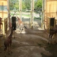 Photo taken at Giraffen by Floris W. on 9/28/2012