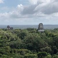 Photo taken at Parque Nacional Tikal by Mark M. on 1/15/2017