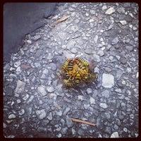 รูปภาพถ่ายที่ Terry Hershey Park โดย Taylor C. เมื่อ 11/19/2012