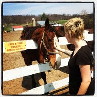 Photo taken at Ryerss Farm for Aged Equines by Matthew John M. on 4/13/2014