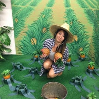 Photo taken at Hawaii Children's Discovery Center by y0kS on 11/20/2016