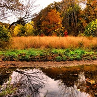 Photo taken at Frick Park by Jeff C. on 10/26/2013
