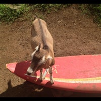 Photo taken at Surfing Goat Dairy by Edward L. on 10/14/2012