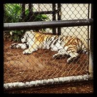 Photo taken at Louisiana State University by John P. on 2/8/2013