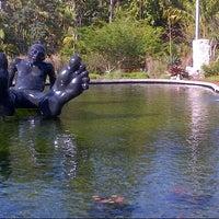 Photo taken at Miami Beach Botanical Garden by Adorkable G. on 1/13/2013