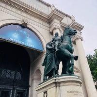 รูปภาพถ่ายที่ American Museum of Natural History Museum Shop โดย J. V. เมื่อ 7/30/2018