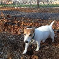 Photo taken at Palmyra Dog Park by Vicky G. on 11/23/2012