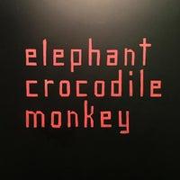 Photo taken at Elephant Crocodile Monkey by Pablo B. on 7/29/2016