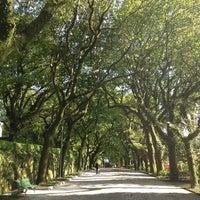Photo taken at Parque da Alameda by Xavi L. on 5/2/2013