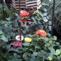 ... Photo Taken At Tucson Botanical Gardens By Monica T. On 10/6/2012 ...