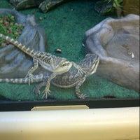 Photo taken at PetSmart by Trina Beana on 10/7/2012