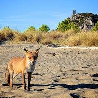 Photo taken at Argentario Golf Resort & Spa by Argentario R. on 8/20/2015