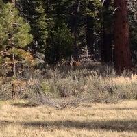 Photo taken at Camp Richardson by Raul K. on 5/9/2014