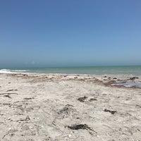 Photo taken at Tarpon Bay Beach by Rich R. on 4/27/2017