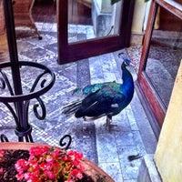 Photo taken at Medeo Restaurant by Elle B. on 9/21/2012
