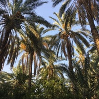 Photo taken at Oasis Tozeur by Max R. on 8/18/2017