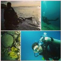 Photo taken at Sea Dancer Dive Center by Георгий Р. on 1/9/2013