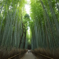 Photo taken at Arashiyama Bamboo Grove by Yoonski K. on 8/23/2013