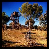 Photo taken at Monte de Boadilla by Dario M. on 11/24/2013