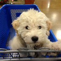 Photo taken at PetSmart by Patricia D. on 1/10/2013