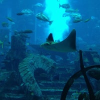 Photo taken at The Lost Chambers Aquarium by 7sooon84 on 9/14/2012
