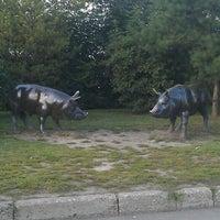 Photo taken at Велком by Rushan h. on 8/11/2013