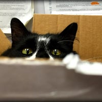 Photo taken at Cat's Corner Veterinary Hospital by Cat's Corner Veterinary Hospital on 4/7/2016