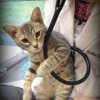 Photo taken at Cat's Corner Veterinary Hospital by Cat's Corner Veterinary Hospital on 4/5/2016