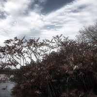Photo taken at Lake Chaminwood Preserve by Carrie C. on 11/11/2017