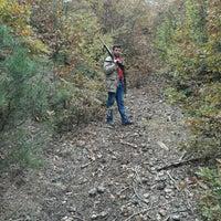 Photo taken at İntikamtepe Şehitliği by Murat V. on 10/18/2016