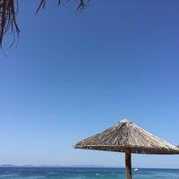 Photo taken at Baracuda Beach Bar by Vasya Y. on 8/23/2018