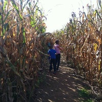 Photo taken at Mast Farms Corn Maze by Amy Z. on 10/14/2013