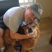 ... Photo Taken At Winter Garden Animal Hospital By Jaclyn W. On 8/10/ ...