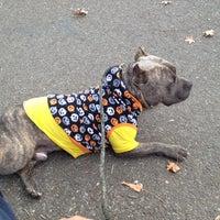 Photo taken at Cunningham Park Dog Run by robert on 10/31/2013