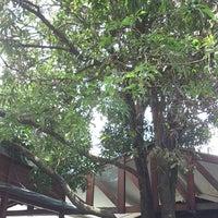 Foto tirada no(a) Fazendinha por Mairon C. em 11/24/2012